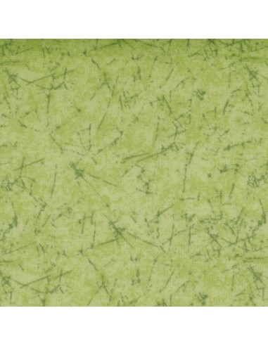Tkanina bawełniana Light Green Parchment