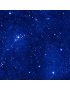 Constellations: Navy Stars...