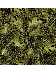 Green Pinecones Paintbrush...