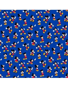 Disney Mickey Mouse Packed...