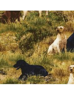 Tkanina bawełniana Grass Dogs