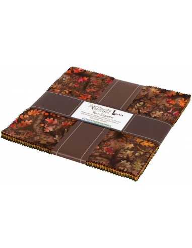 Layer cake Artisan Batiks Cornucopia 10
