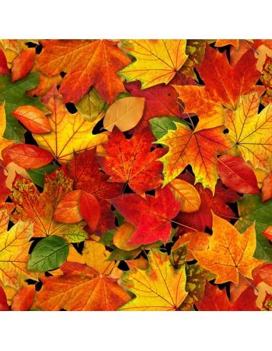 Tkanina bawełniana Multi Fall Leaves