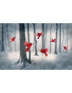 Panel bawełniany Cardinals