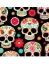 Czaszki i szkielety